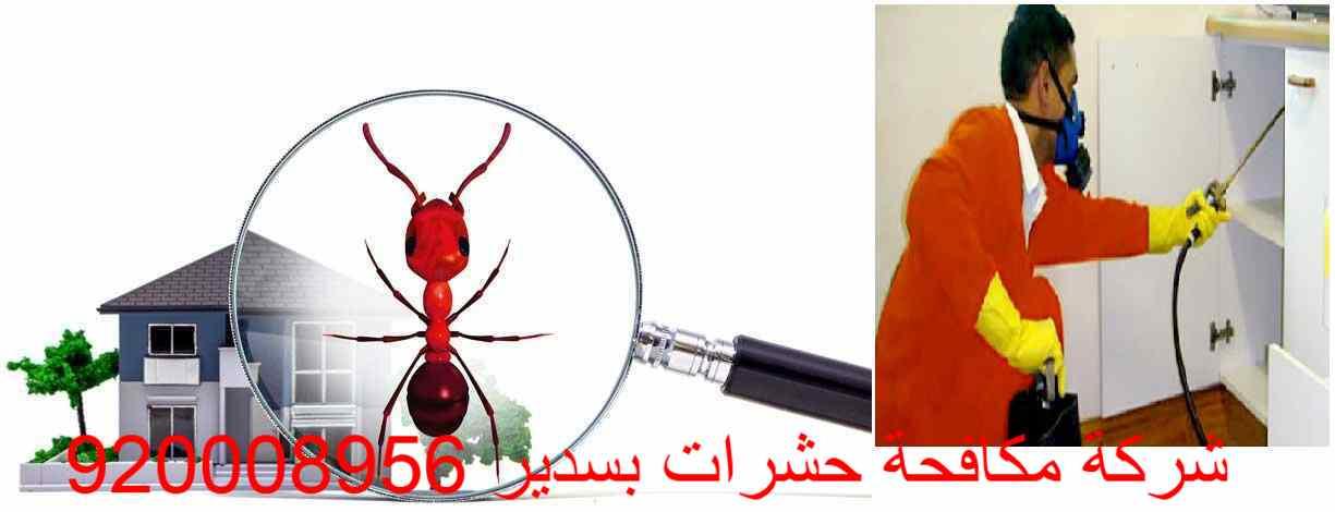 شركة مكافحة حشرات بسدير