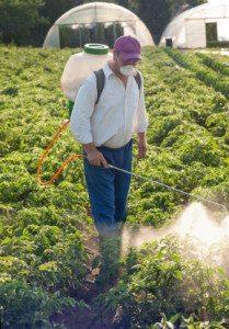 شركة رش مبيدات حشرية بالرياض شركة رش مبيدات حشرية بالرياض شركة رش مبيدات حشرية بالرياض Spray insecticides Company