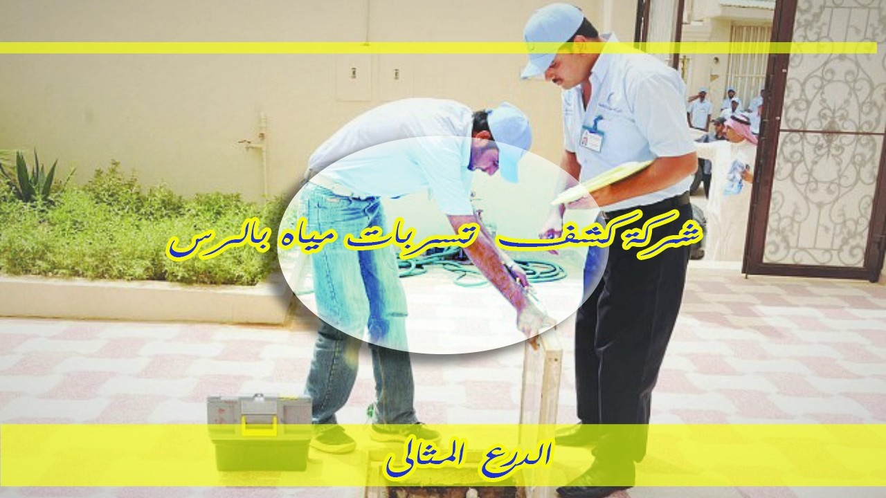 شركة كشف تسربات مياه بالرس