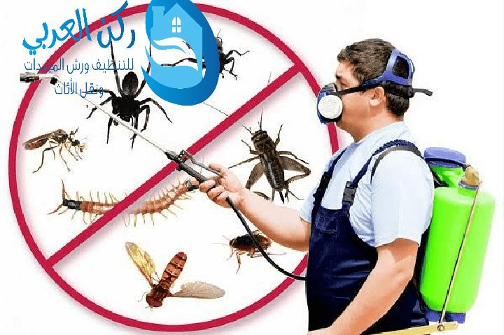 شركة رش مبيدات بالمذنب