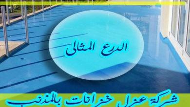 Photo of شركة عزل خزانات بالمذنب 920001963