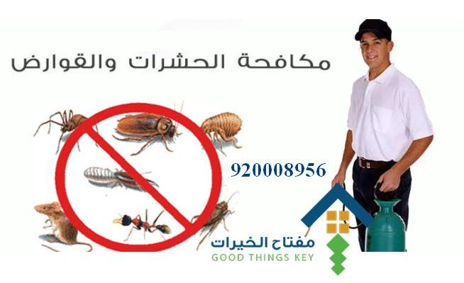 افضل شركة مكافحة حشرات بالرياض 920008956