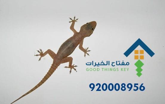 افضل شركة مكافحة البرص غرب الرياض 920008956