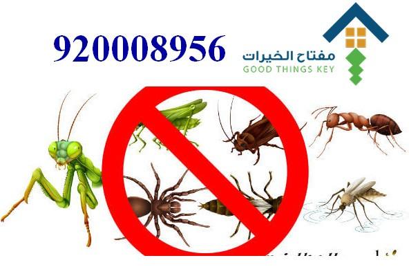 افضل شركة مكافحة الحشرات جنوب الرياض 920008956