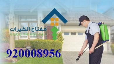Photo of افضل شركة مكافحة الحشرات جنوب الرياض 920008956