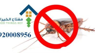 Photo of افضل شركة مكافحة الحشرات شرق الرياض 920008956