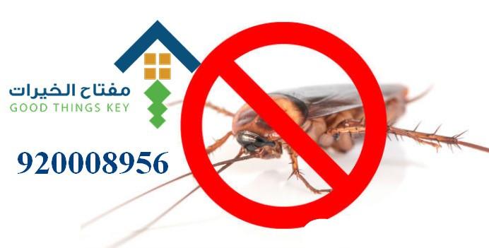 افضل شركة مكافحة الحشرات شرق الرياض 920008956