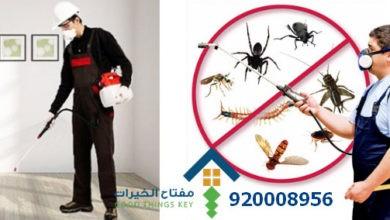Photo of افضل شركة مكافحة الحشرات شمال الرياض 920008956