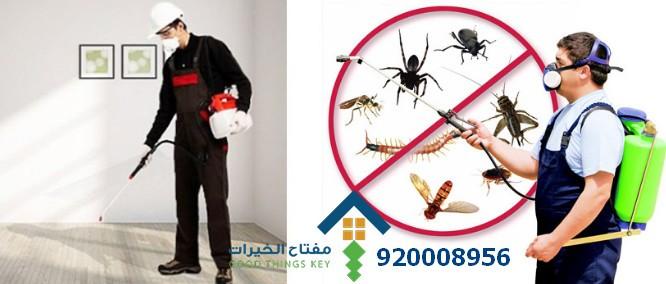 افضل شركة مكافحة الحشرات شمال الرياض 920008956
