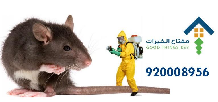 افضل شركة مكافحة الفئران بالرياض 920008956