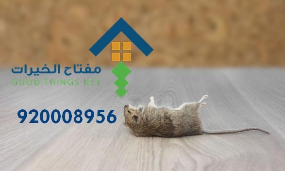 افضل شركة مكافحة الفئران غرب الرياض 920008956