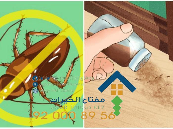 أسعار شركات مكافحة الحشرات بالرياض