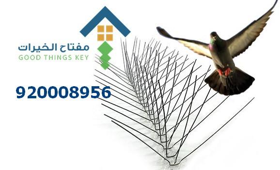 شركة طارد الحمام شمال الرياض 920008956