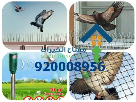 شركة طارد الحمام غرب الرياض 920008956