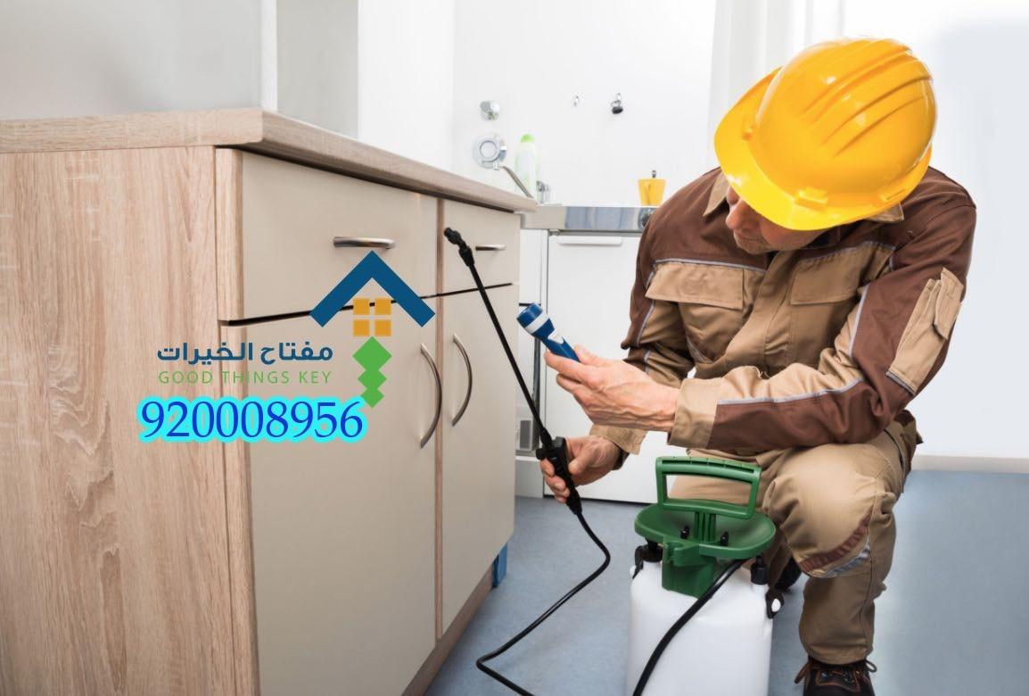 شركة مكافحة حشرات جنوب الرياض