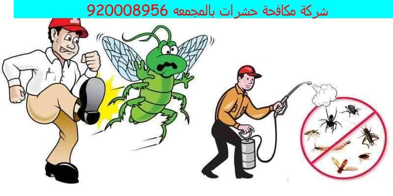 شركة مكافحة حشرات بالمجمعه 920008956